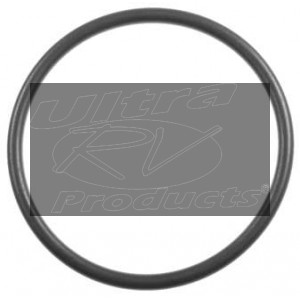 25166292  -  Seal - Fuel Sender (O-Ring)